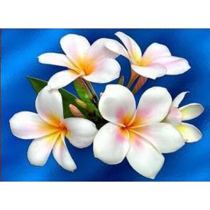 Южные цветы Ткань для вышивки лентами Каролинка