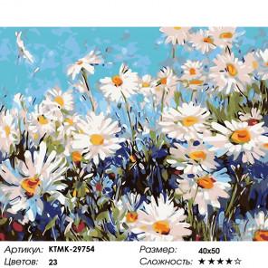 Ромашковый луг Раскраска по номерам на холсте Живопись по номерам KTMK-29754