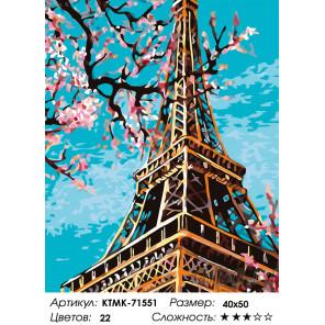 картины по номерам эйфелева башня купить в интернет магазине