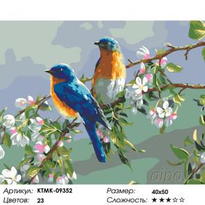 Количество цветов и сложность Весенние певцы Раскраска по номерам на холсте Живопись по номерам KTMK-09352