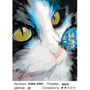 Количество цветов и сложность Неожиданность Раскраска по номерам на холсте Живопись по номерам KTMK-37851
