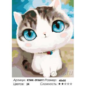 Количество цветов и сложность Трогательный котик Раскраска по номерам на холсте Живопись по номерам KTMK-3936011