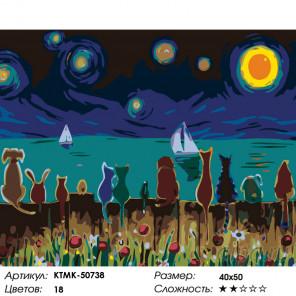 Количество цветов и сложность Волшебное небо Раскраска по номерам на холсте Живопись по номерам KTMK-50738