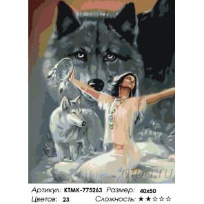 Количество цветов и сложность Сила волка Раскраска по номерам на холсте Живопись по номерам KTMK-775263