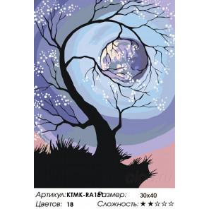 Количество цветов и сложность Сияние луны Раскраска по номерам на холсте Живопись по номерам KTMK-RA181