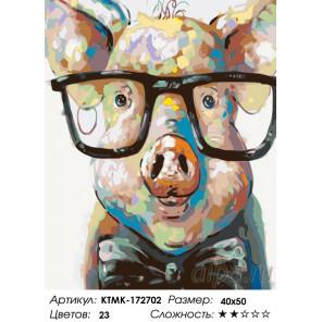 Количество цветов и сложность Стильный поросенок Раскраска по номерам на холсте Живопись по номерам KTMK-172702