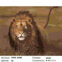 Количество цветов и сложность Львиная охота Раскраска по номерам на холсте Живопись по номерам KTMK-32548