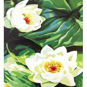 Кувшинки Раскраска картина по номерам акриловыми красками на холсте Paint by Number