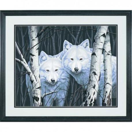Два белых волка между берез DMS- 91094 Раскраска Dimensions