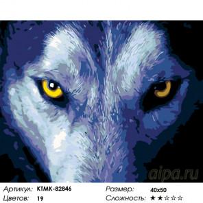 Пронзительный взор Раскраска по номерам на холсте Живопись по номерам KTMK-82846