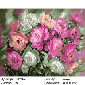 Количество цветов и сложность Аромат свежести Раскраска картина по номерам на холсте GX26463