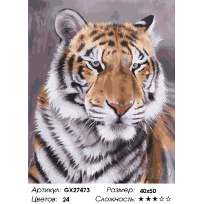 Количество цветов и сложность Взляд тигра Раскраска картина по номерам на холсте GX27473