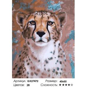 Молодой ягуар Раскраска картина по номерам на холсте GX27472
