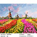 Количество цветов и сложность Цветущие тюльпаны Раскраска картина по номерам на холсте GX27201