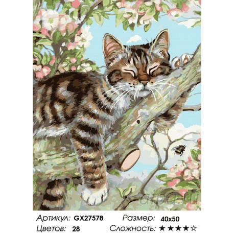 Количество цветов и сложность Котенок на ветке Раскраска картина по номерам на холсте GX27578
