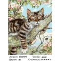 Котенок на ветке Раскраска картина по номерам на холсте