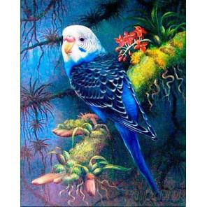 Волнистый попугайчик Алмазная мозаика вышивка Painting Diamond