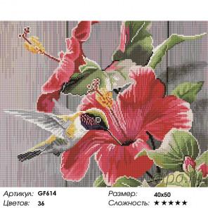 Количество цветов и сложность Гибискус и колибри Алмазная вышивка мозаика на подрамнике GF614