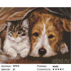 КОЛИЧЕСТВО ЦВЕТОЫ И СЛОЖНОСТЬ Кот и пес Алмазная вышивка мозаика на подрамнике GF513