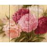 Оттенки розовых пионов Картина по номерам на дереве GT429