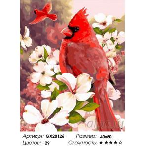 Количество цветов и сложность Красный кардинал Раскраска картина по номерам на холсте GX28126