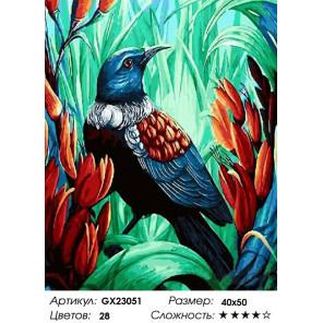 Количество цветов и сложность Тропическая птица Раскраска картина по номерам на холсте GX23051