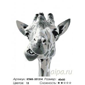 Веселый жираф Раскраска по номерам на холсте Живопись по номерам KTMK-351314