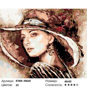 Количество цветов и сложность Взгляд леди Раскраска по номерам на холсте Живопись по номерам KTMK-54660