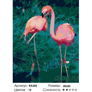 Танец фламинго Раскраска по номерам на холсте Живопись по номерам RA243