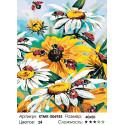 Количество цветов и сложность Садовые ромашки Раскраска по номерам на холсте Живопись по номерам KTMK-006955