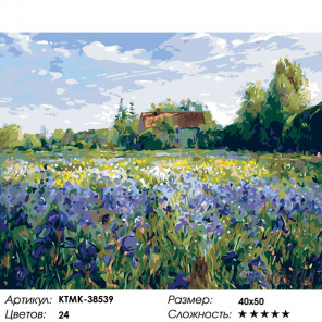 Поле ирисов Раскраска по номерам на холсте Живопись по номерам KTMK-38539