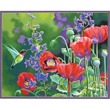 колибри и маки раскраска картина по номерам Dimensions Dms 73 91443