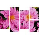 Нежный цветок Модульная картина по номерам на холсте с подрамником