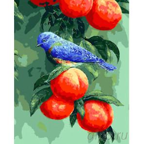 Птичка на персиках Раскраска картина по номерам на холсте