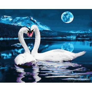Два лебедя при луне Раскраска картина по номерам на холсте