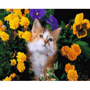 Кот в цветах Раскраска картина по номерам на холсте