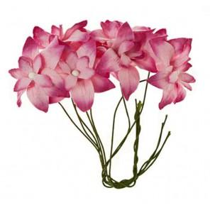 Нарциссы Розовые Цветы бумажные для скрапбукинга, кардмейкинга Scrapberry's