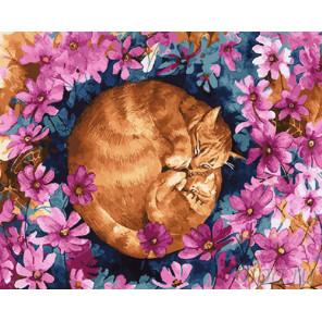 Сон котов Раскраска картина по номерам на холсте