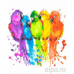 Цветные птички Раскраска картина по номерам на холсте