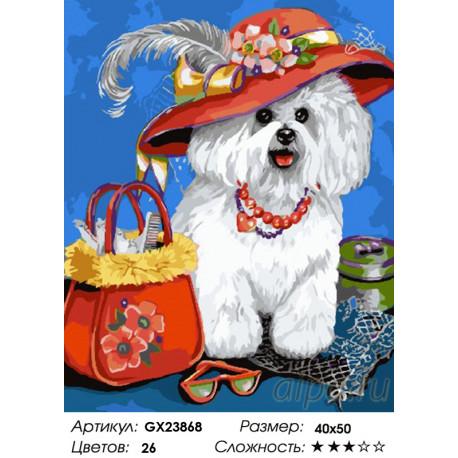 пудель в шляпке раскраска картина по номерам на холсте Gx23868