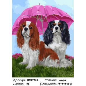 Количество цветов и сложность Собачки под зонтом Раскраска картина по номерам на холсте GX27763