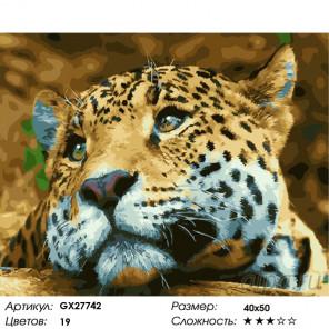 Количество цветов и сложность Леопард Раскраска картина по номерам на холсте GX27742