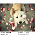 Собака в лепестках роз Раскраска картина по номерам на холсте