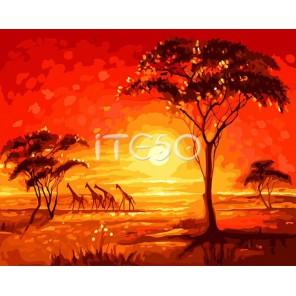 Африка и жирафы Раскраска ( картина ) по номерам акриловыми красками на холсте Iteso