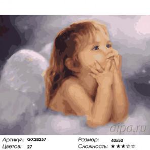 Количество цветов и сложность Ангелочек Раскраска картина по номерам на холсте GX28257
