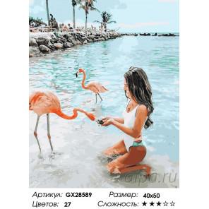 Количество цветов и сложность С розовым фламинго Раскраска картина по номерам на холсте GX28589