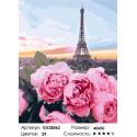 Цветы в Париже Раскраска картина по номерам на холсте