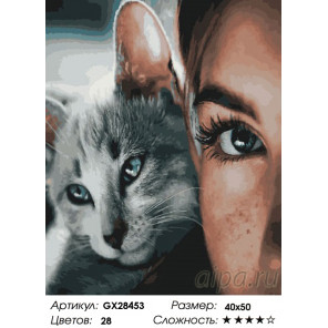Количество цветов и сложность Прекрасные глаза Раскраска картина по номерам на холсте GX28453