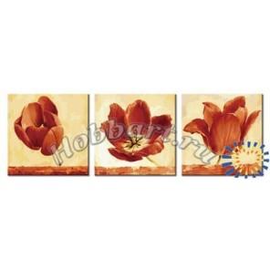 Трио тюльпанов Раскраски картины по номерам акриловыми красками на холсте Hobbart