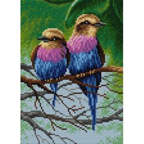 Птицы Алмазная мозаика на магнитной основе V-111